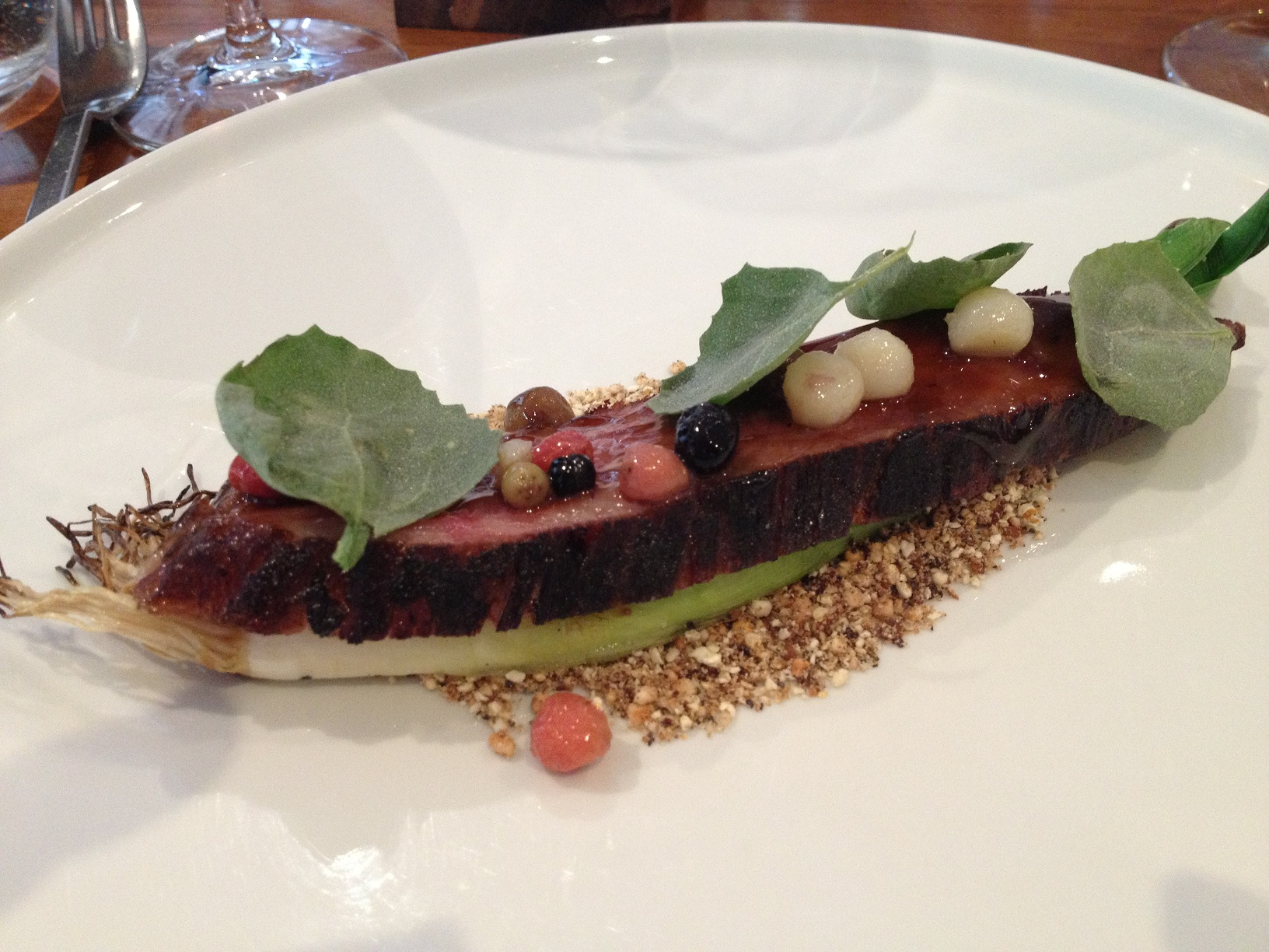 molasses glazed beef, saltbush, native berries, leek resized