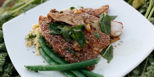 Ep 15 - Chia crusted Moroccan chicken breast with chia couscous