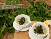Stracciatella soup with cavolo nero and lard