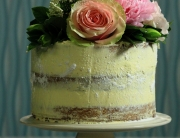 Naked cake low res