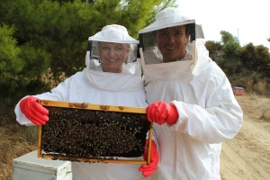 Bee-keeping filming Taste of Greece, Kythera